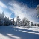 skischule-upland-kurszeiten_16